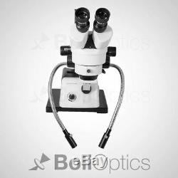 7X-45X WF Stereo Zoom Microscope, Boom Stand, Dual Gooseneck Fiber Optic Light