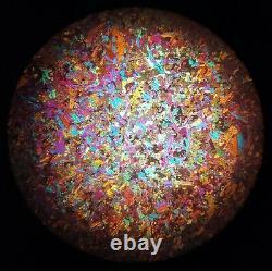 CARL ZEISS WL Polarizing Petrographic Microscope Stereo POL Objectives NICE #613