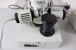 Carl zeiss jena citoval stereo binocular microscope microscopy