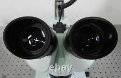 G175160 Celestron Stereo Microscope with 2x/4x Head & WF10x/20 Eyepieces