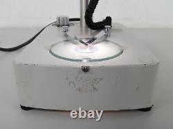 Hampshire Micro Stereo Binocular Microscope Lab
