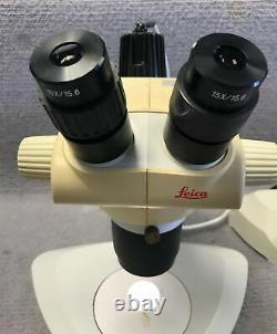 Leica GZ6 Stereo Microscope with Stand & Lamp Tested Warranty Complete Set