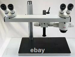Leica MZ6 Dual View Teaching Dissecting Stereo Microscope 0.5x Objective Pointer