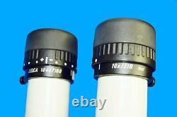 Leica MZ6 Stereo Microscope & Techniquip Proline 40 LED Light Unit
