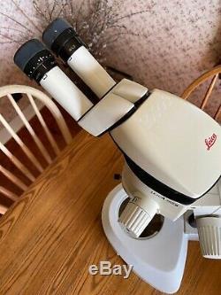 Leica MZ6 Stereo Zoom Microscope, 10x 21B Leica eyepieces, Focus Stand Nice