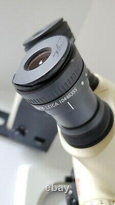 Leica S6e Stereo Zoom Microscope With Leica L2 On A Stand And 16x Eyepieces