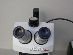 Leica Stereo Zoom 7 binocular trinocular microscope