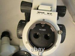 Leica Wild Heerbrugg stereo zoom Microscope M8, 10x/21 eyepcs, inclined head