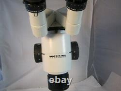 Leica Wild Heerbrugg stereo zoom microscope M8, inclined head 10x eyepieces