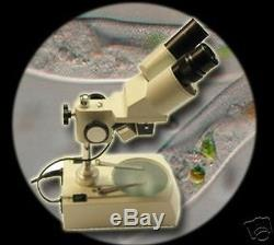 Microscope/microscoop Stereo Binocular Labor Mk3
