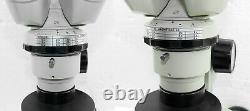 Nikon Binocular Polarization Stereo Zoom Microscope with Pol and Gypsum filter