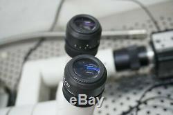 Nikon SMZ800 Zoom Stereo-Microscope