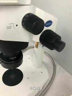Olympus SZX10 stereo microscope, light source, polarizer, 78X magnification
