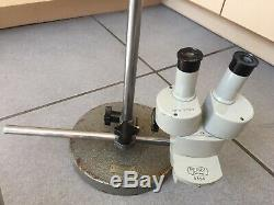 Perry Stereo Binocular Microscope