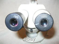 Wild Heerbrugg M3 Stereo Microscope on Wild Stand, Wild 10x eye pieces withMirror