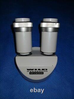 Wild Heerbrugg M8 Stereomicroscope Stereo Microscope Binocular Head