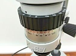 Wild M7S Stereo Microscope 10x / 21B oculars & 12v 100w Transmitted Light BF/ DF